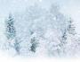 大雪飘飘打一成语