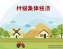 村级集体经济发展思路