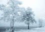 描写大雪纷飞的诗句