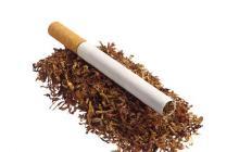 抽烟的语录